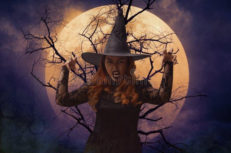 Läskig halloween häxa som står över den död träd, fullmånen och spo arkivbild