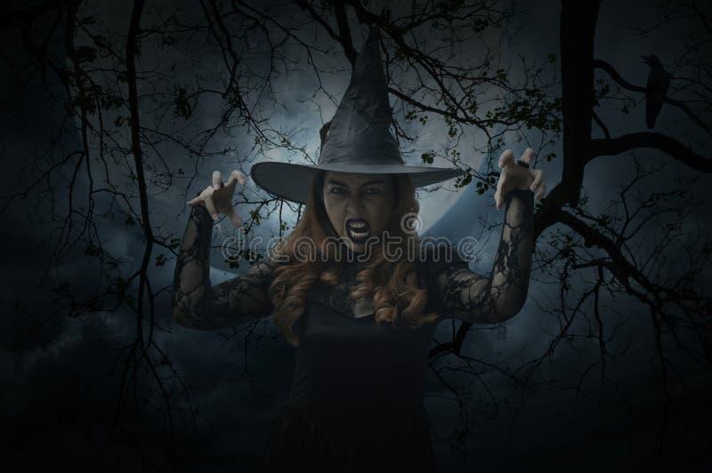 Läskig halloween häxa som står över det döda trädet, fågel, fullmåne a royaltyfri bild