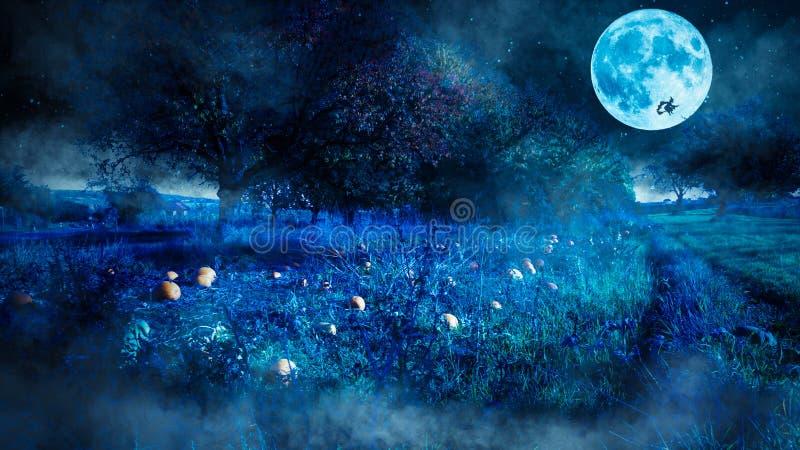 Läskig halloween nattplats med ett pumpafält och en flyga häxa som en kontur för fullmånen royaltyfria foton