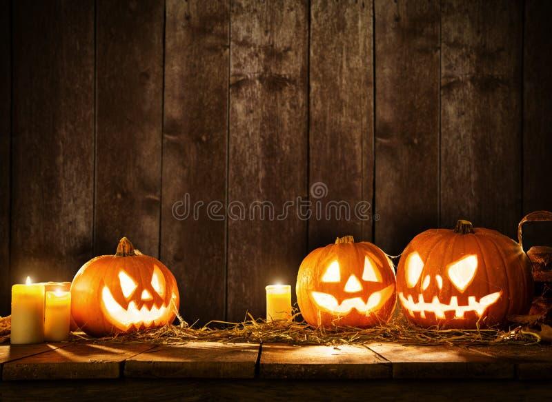 Läskiga halloween pumpor på träplankor royaltyfri fotografi