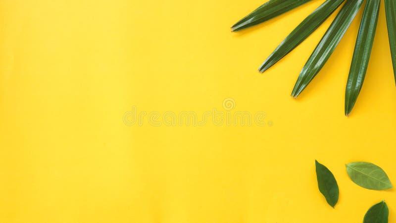 Lässt copyspace auf gelbem Hintergrund lizenzfreie stockfotografie