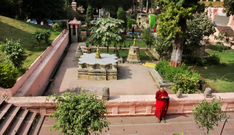 Läste den unga munken för röd kläder en bok fotografering för bildbyråer