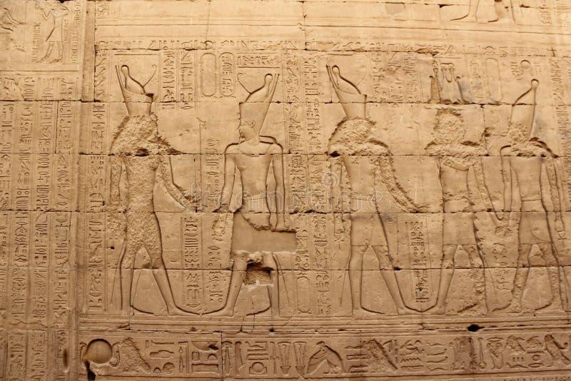 Lättnader på väggarna av templet av Edfu egypt arkivbild