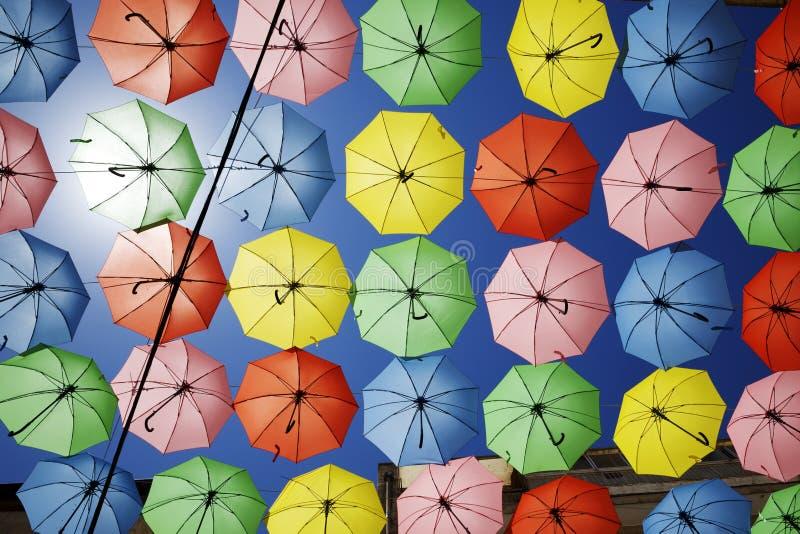 Lättretliga paraplyer i The Sun royaltyfri bild