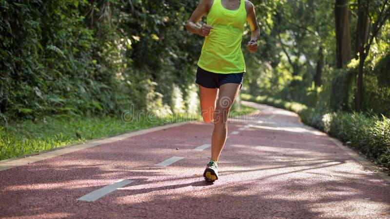 Läufer, der auf dem Morgenparkstraßen-Trainingsrütteln läuft lizenzfreie stockbilder