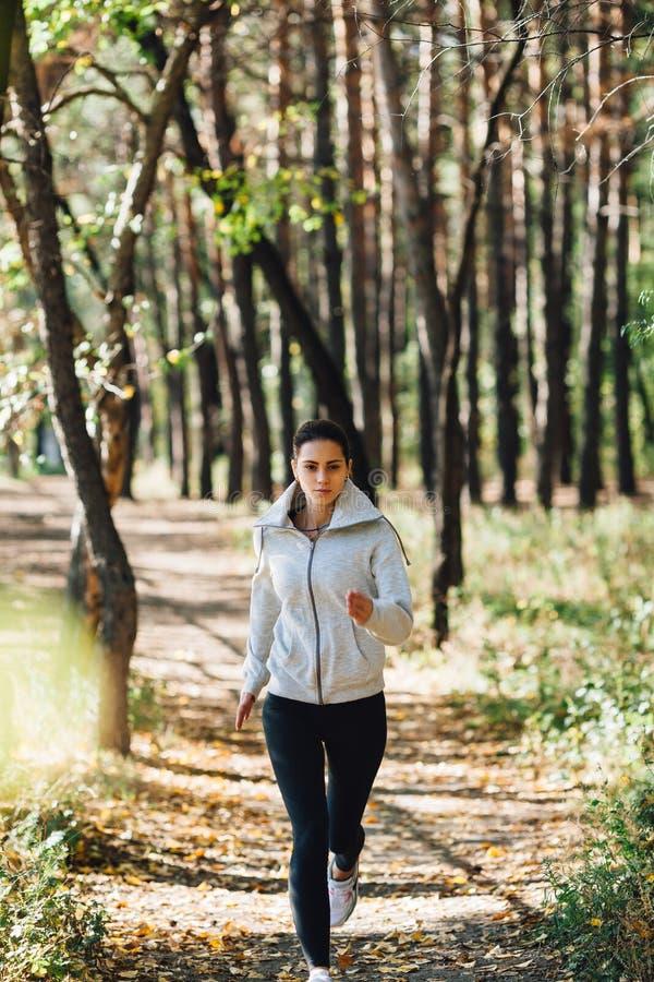 Läuferfrau, die im Herbstpark rüttelt lizenzfreie stockfotografie