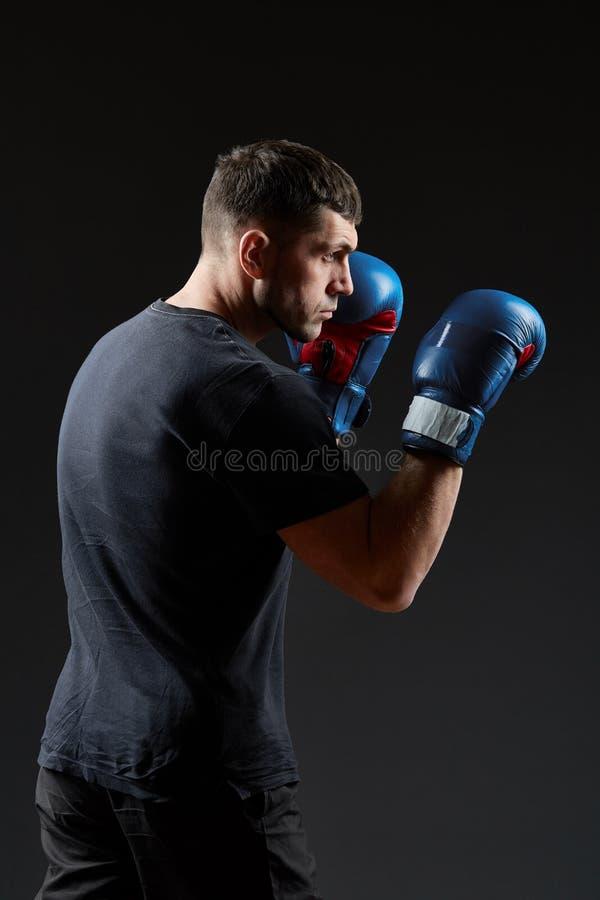 Låg nyckel- studiostående av den stiliga muskulösa kämpen som förbereder sig för att boxas på mörk suddig bakgrund royaltyfri foto