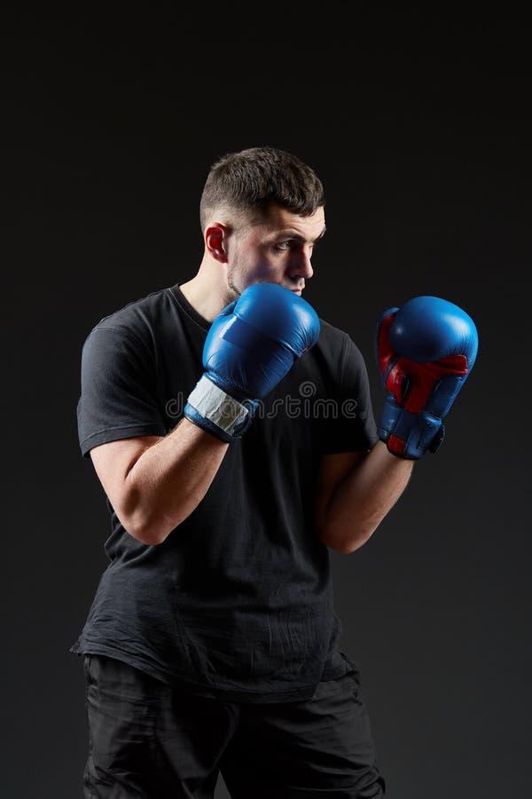 Låg nyckel- studiostående av den stiliga muskulösa kämpen som förbereder sig för att boxas på mörk suddig bakgrund arkivbilder
