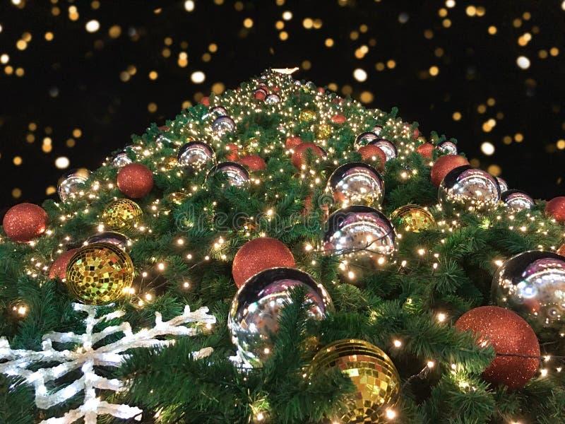 Låg vinkel för Closeup eller nedersta sikt av det jätte- julträdet med bokeh i natten på svart bakgrund royaltyfri foto