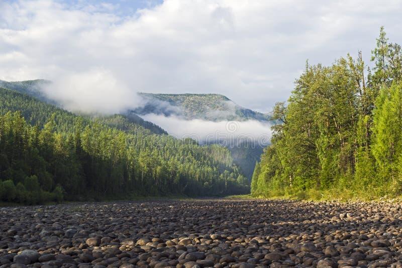 Låga moln på en bergssida royaltyfri fotografi