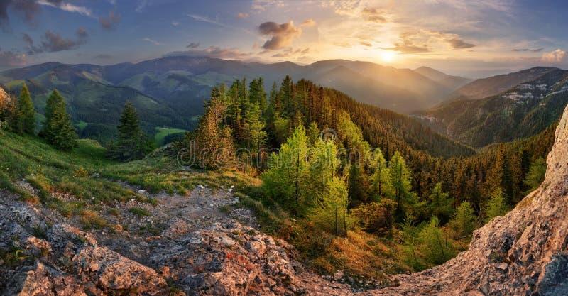 Lågt landskap för Tatra bergsommar äng med enorma stenar bland gräset arkivfoton