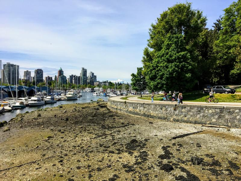 L?gvatten i kolhamn, som folket tycker om en h?rlig dag som g?r och cyklar l?ngs havsv?ggen i Stanley Park, i Vancouver royaltyfria foton