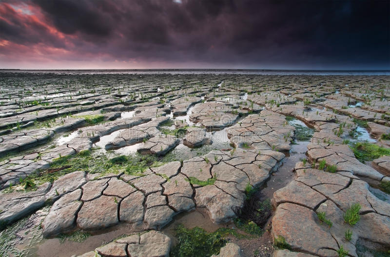 Lågvatten på det Wadden havet på solnedgången royaltyfri bild