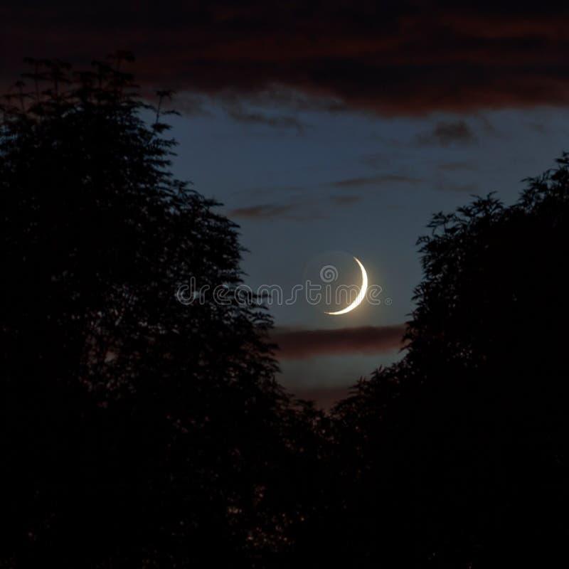 Lågvinkelsskott av en vacker lunar överskuggar i det mystiska himlen med mörka moln arkivbild