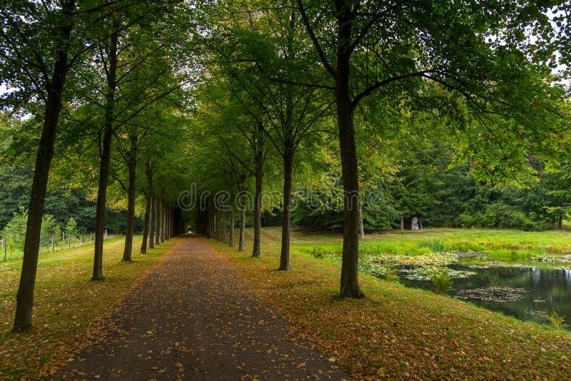 Lång aveny i slottträdgårdar, Fredensborg, Danmark fotografering för bildbyråer