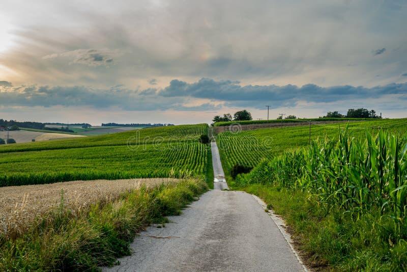 Lång bana på bavarian fält med molnig himmel royaltyfri bild
