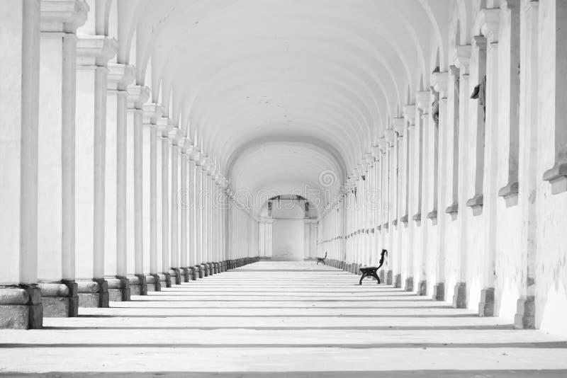Lång barock kolonnad i svartvitt fotografering för bildbyråer