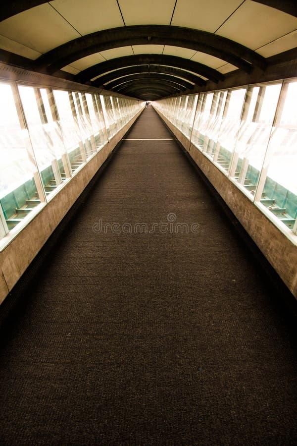 Lång Glass korridor royaltyfri foto
