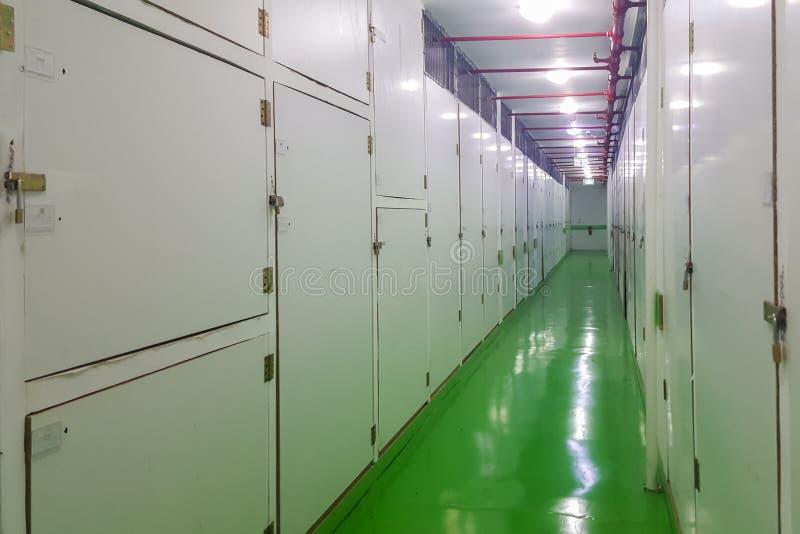 Lång korridor, grönt golv och vagn, inre själv-lagring lättheter royaltyfri fotografi