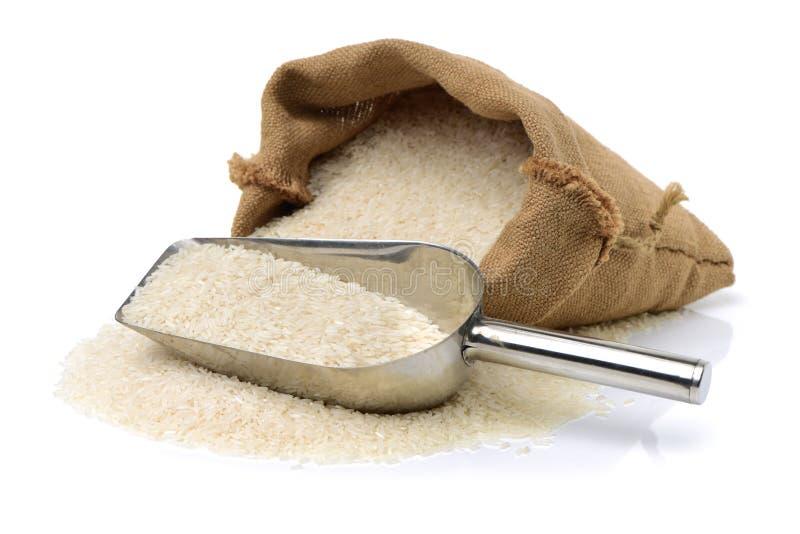 lång rice för korn arkivbild