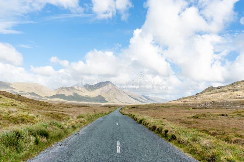 Lång slingrig väg - Irland arkivfoton
