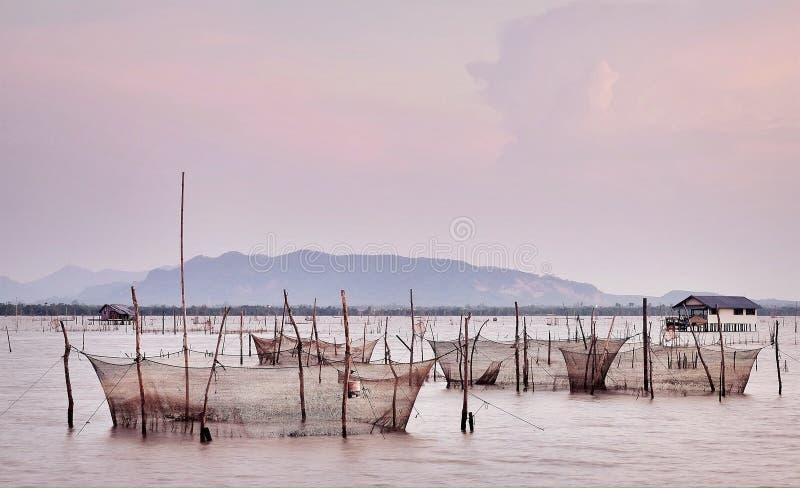 Lång-tailed fartygfunktionsläge av vattentransport fotografering för bildbyråer