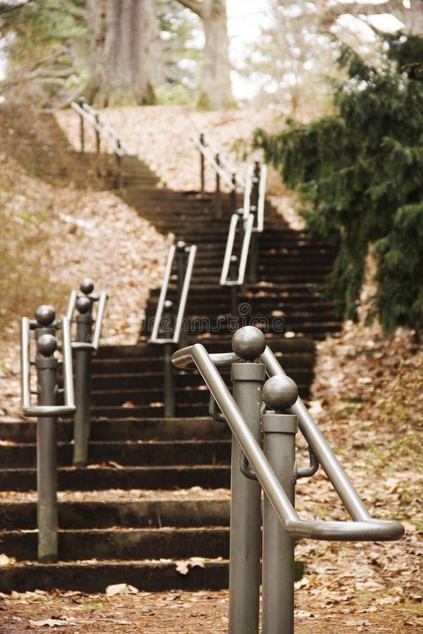 Lång uppsättning av trappa som går till och med skogen i Highland Park Rochester, New York fotografering för bildbyråer