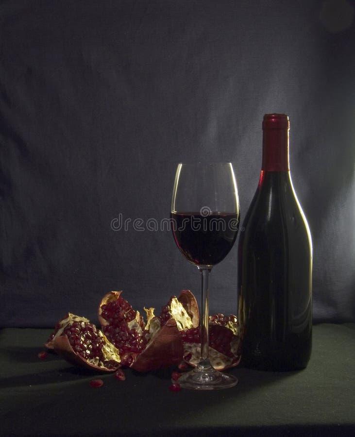 Download Lång vinter för afton arkivfoto. Bild av pomegranate, rött - 510974