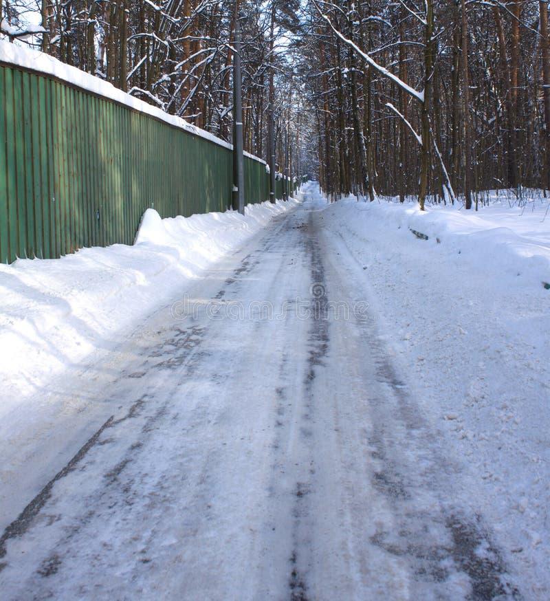 Lång vinterväg till och med skog arkivfoto