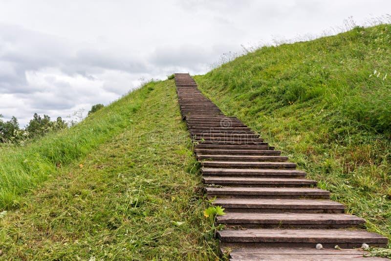 Lång wood trappa till överkanten av dentäckte jord-insättningen royaltyfri bild