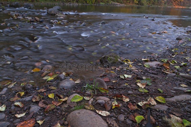 Långa exponeringsfotografier av den rullande floden med nedgånglövverk arkivbild