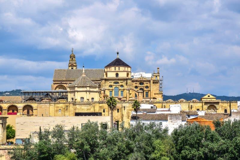 Långdistans- sikt av den stora moskén eller den katolska domkyrkan cordoba spain arkivfoto