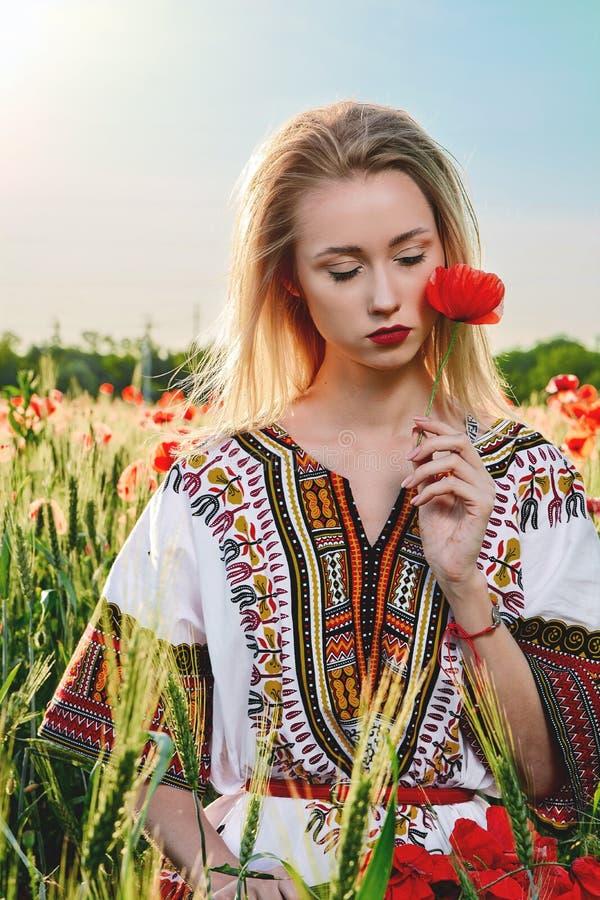 Långhårig blond ung kvinna i en vit kort klänning på ett fält av grönt vete och lösa vallmo royaltyfria bilder