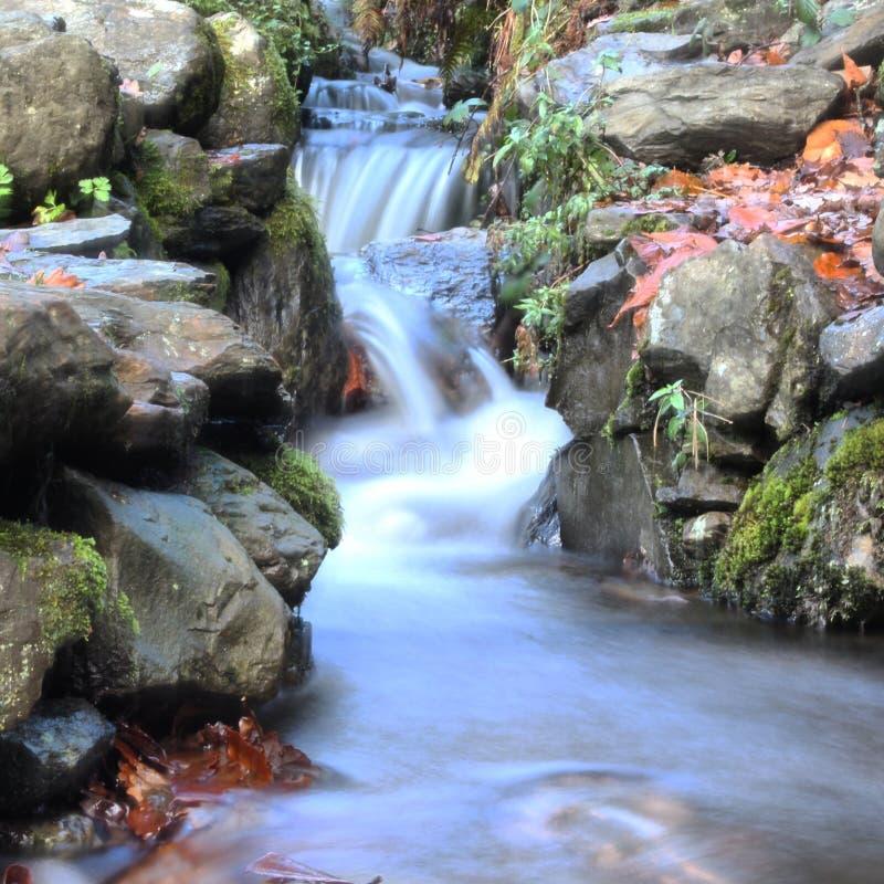 Långsam slutarehastighet för liten vattenfall arkivfoto