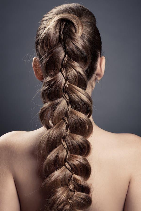 Långt Brown hår. Tillbaka sikt royaltyfria foton