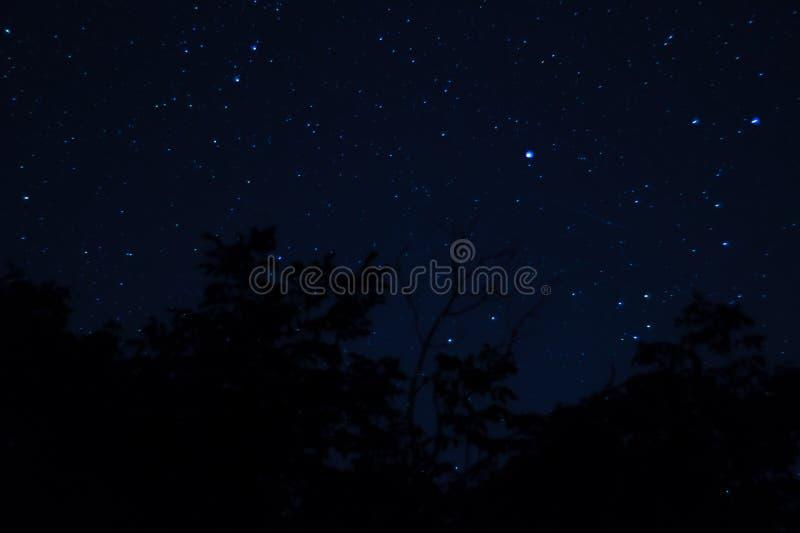 Långt exponeringsnattfoto Många stjärnor med konstellationer Långt från staden royaltyfri bild
