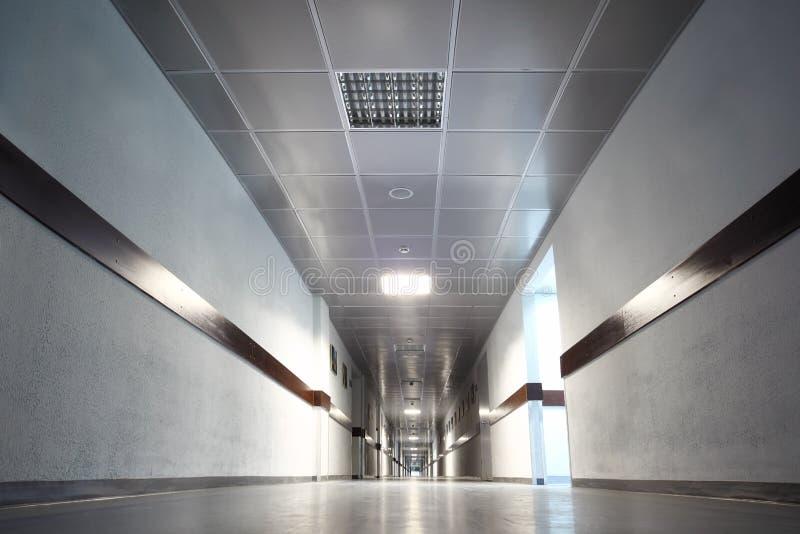 Långt grått hall med dörrar royaltyfria foton