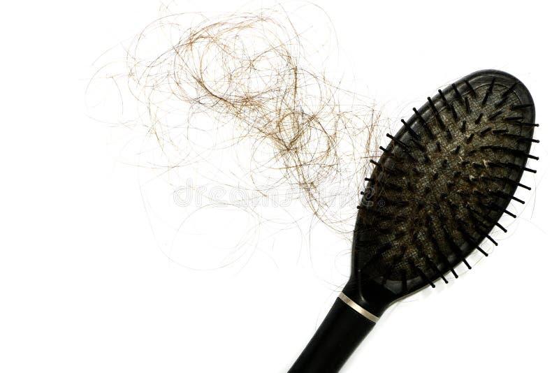 Långt hår för förlust, genom att falla och pinnehårkam, när kvinnabruk på vit bakgrund har kopieringsutrymme Det är ett problem k arkivfoton