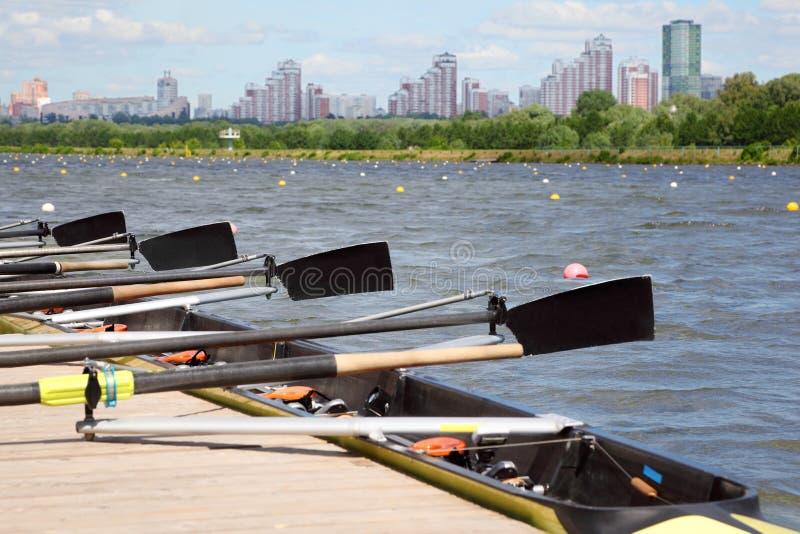 Långt sportfartyg med oars royaltyfri bild