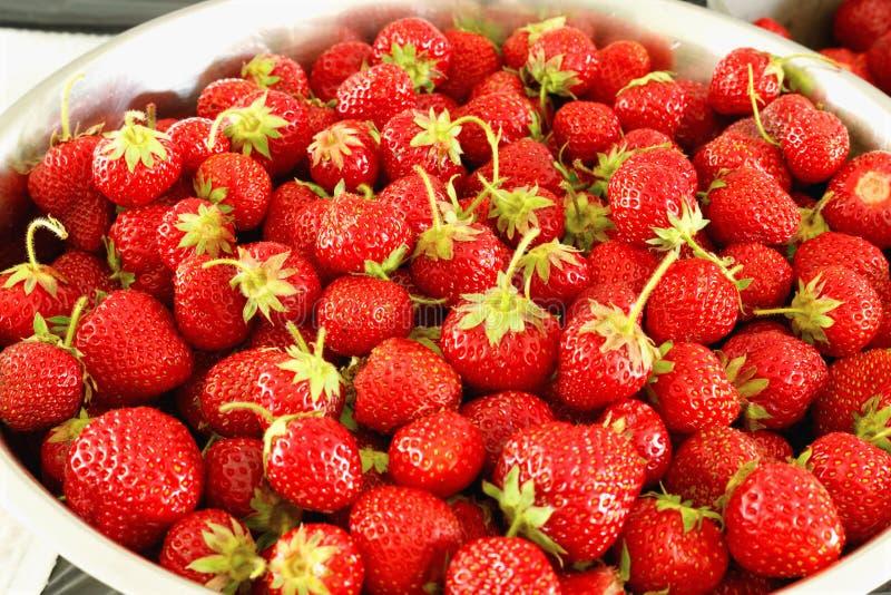 L?r av mogna smakliga jordgubbar Sommarsk?rd arkivbild