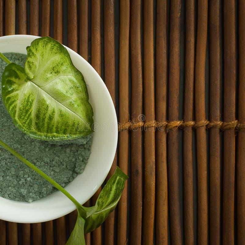 Download Låter Vara Kosmetisk Green För Backgroun Brunnsorten Fotografering för Bildbyråer - Bild av naturligt, salt: 19783405