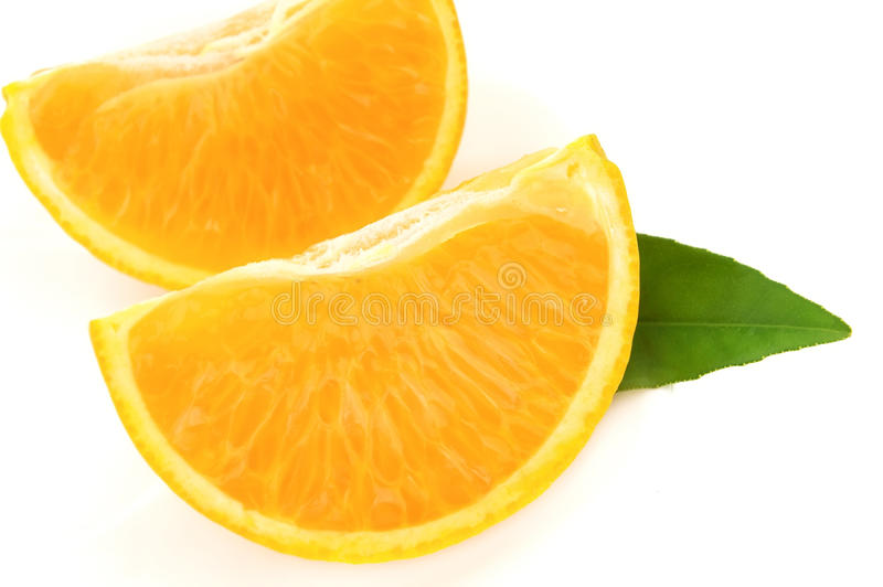 låter vara orangen royaltyfri bild