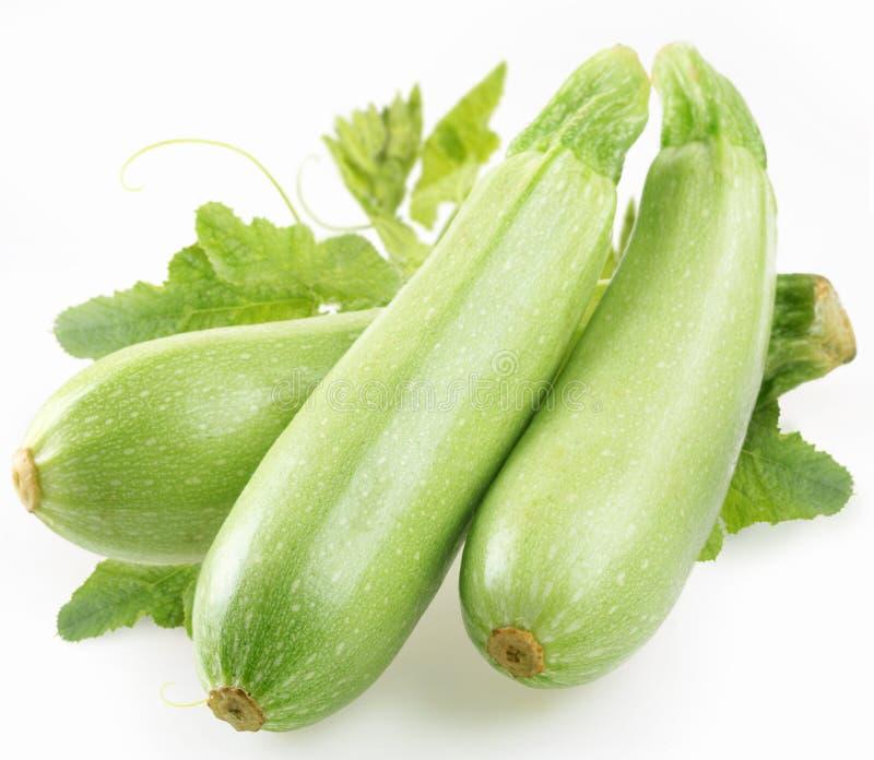 låter vara zucchinien royaltyfri fotografi