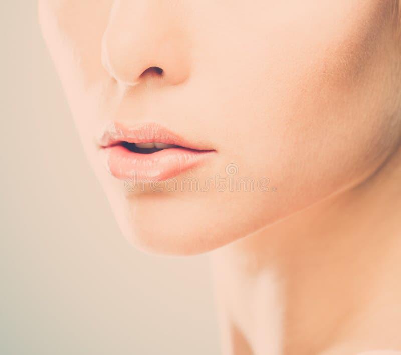 Lèvres de femme photo stock