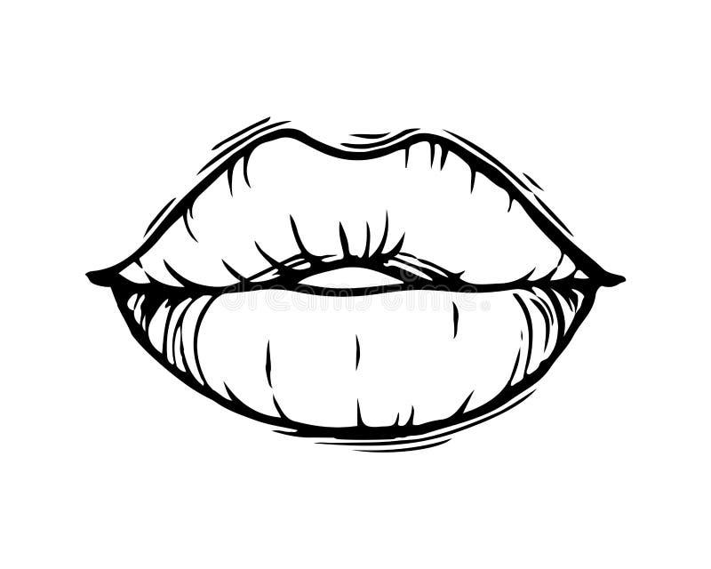 Lèvres femelles tirées par la main d'isolement sur le fond blanc illustration libre de droits