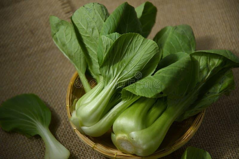 Légume choy de Bok dans un panier photos libres de droits
