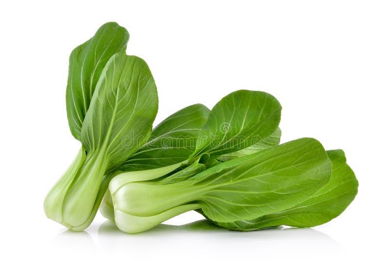 Légume choy de Bok sur le fond blanc images stock