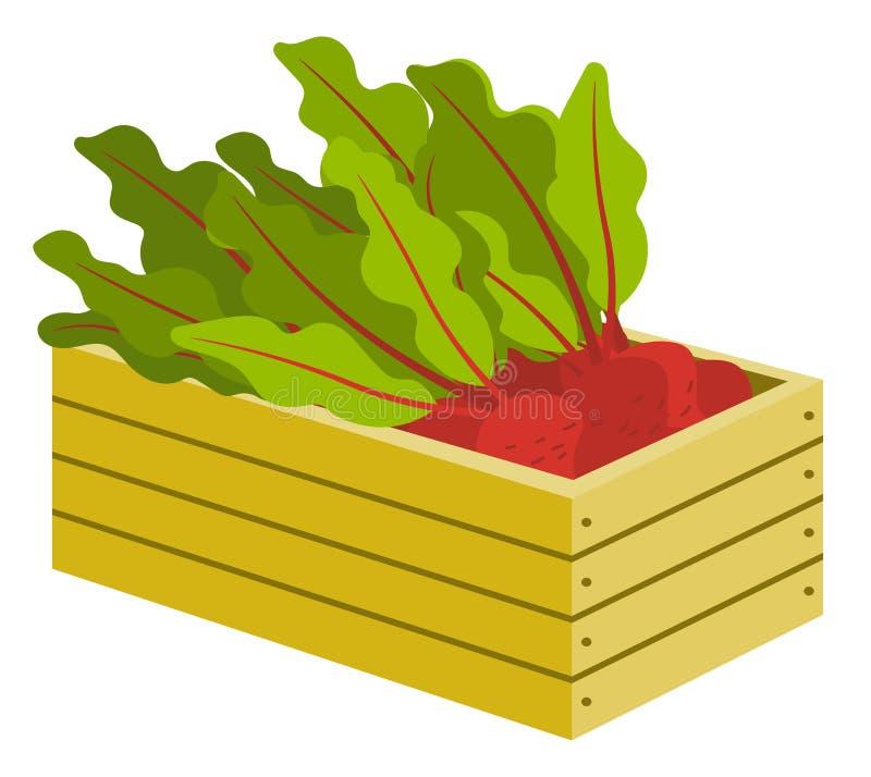 Légume dans la boîte, betterave avec des feuilles dans le vecteur de caisse illustration stock