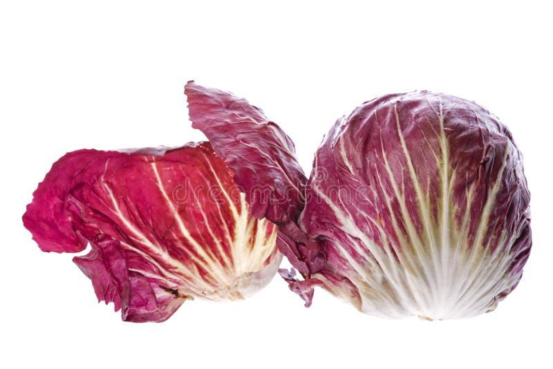 Légume de Radicchio images stock