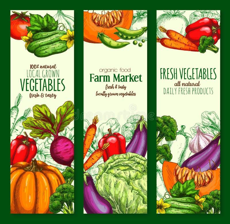 Légume, ensemble organique de bannière de croquis de veggies de ferme illustration stock